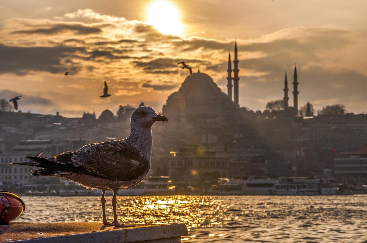 Восточная сказка Стамбул! Авиа-тур 4 ночи (5 дней)!